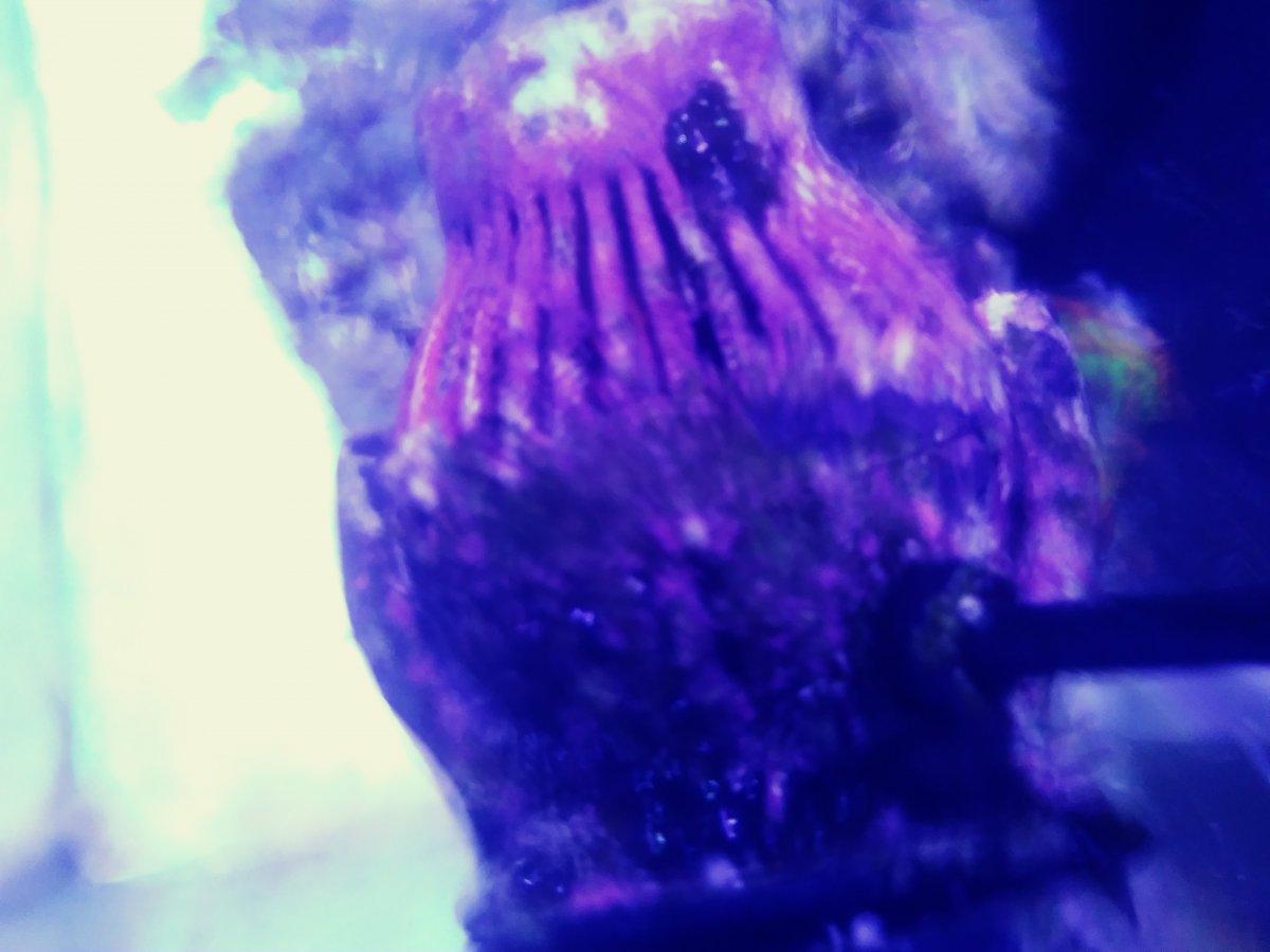 0813192011b_Film1.jpg
