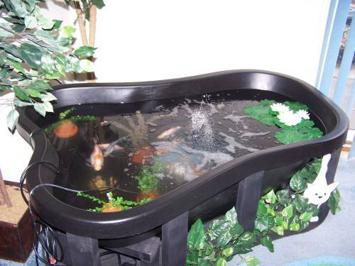 Reefers To Avoid If You Want To Be Happy Reef2reef Saltwater And Reef Aquarium Forum