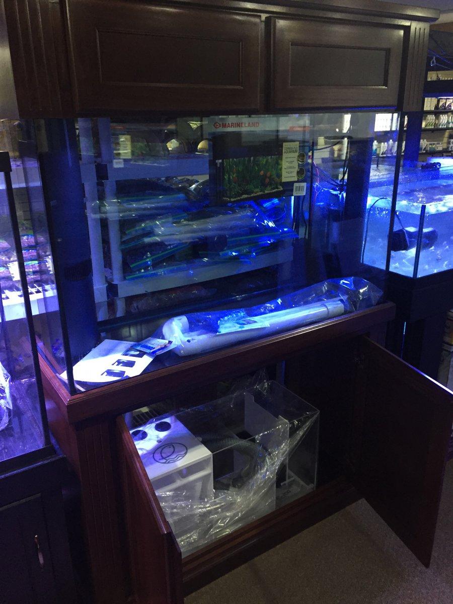 200 Gallon Cube Aquarium 1000 Aquarium Ideas