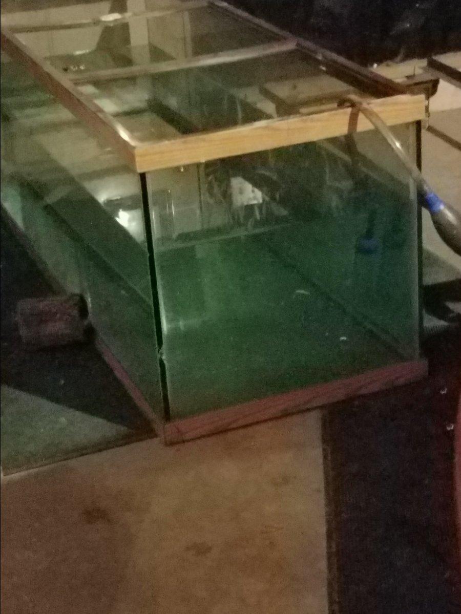 Aquarium Center Brace Broken 1000 Aquarium Ideas