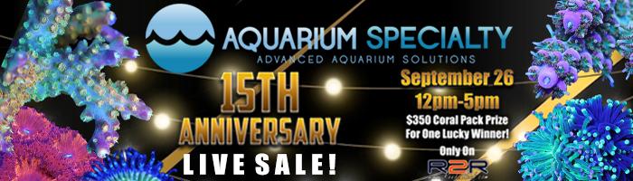 15th-anniversary-live-sale-700-200.jpg