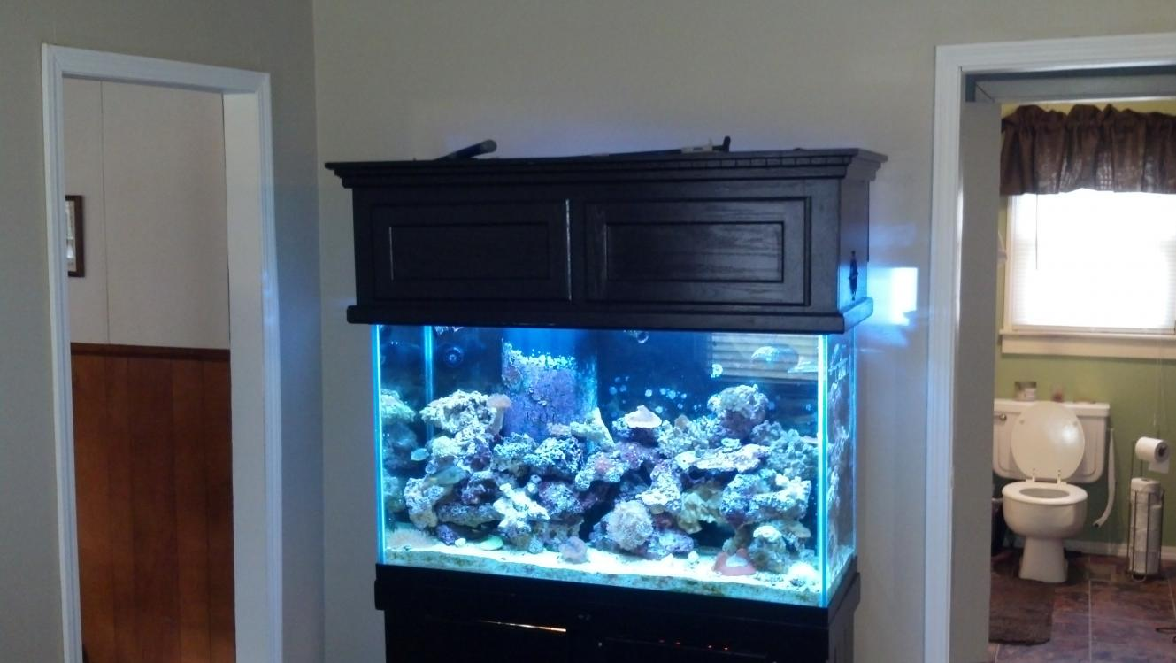 160 Gallon Aquarium Stand And Canopy Gret Price Reef2reef & 160 Gallon Aquarium For Sale - 1000+ Aquarium Ideas