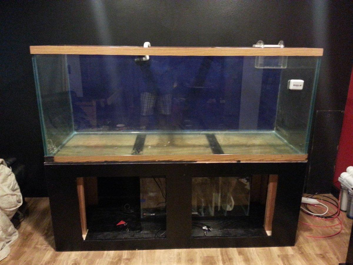Oil Based Enamel Paint Aquarium Glass