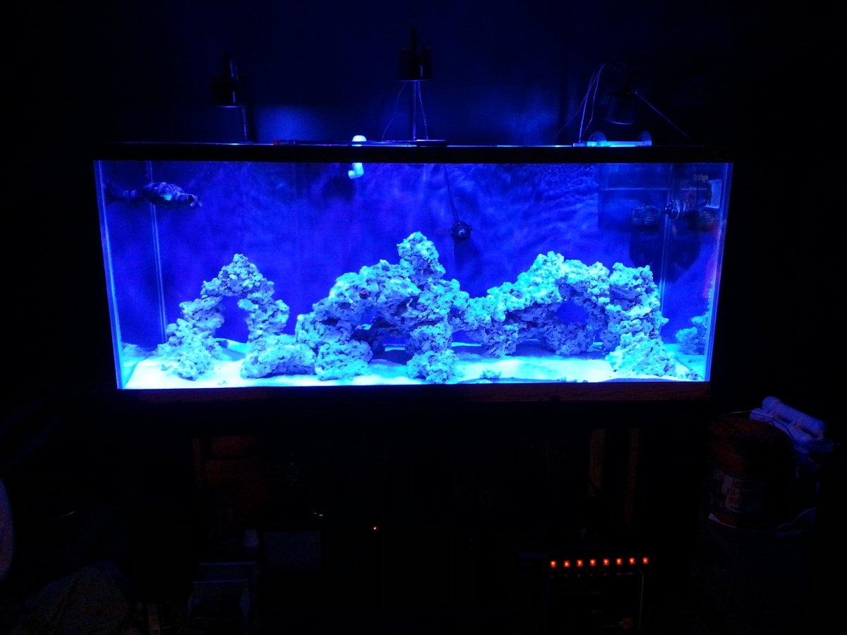 Best Paint For Aquarium Gl