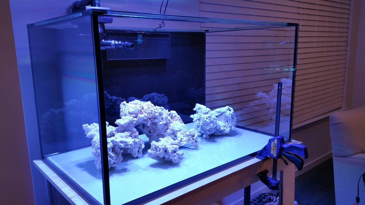 Minimalist Aquascaping Page 15 Reef2reef Saltwater And