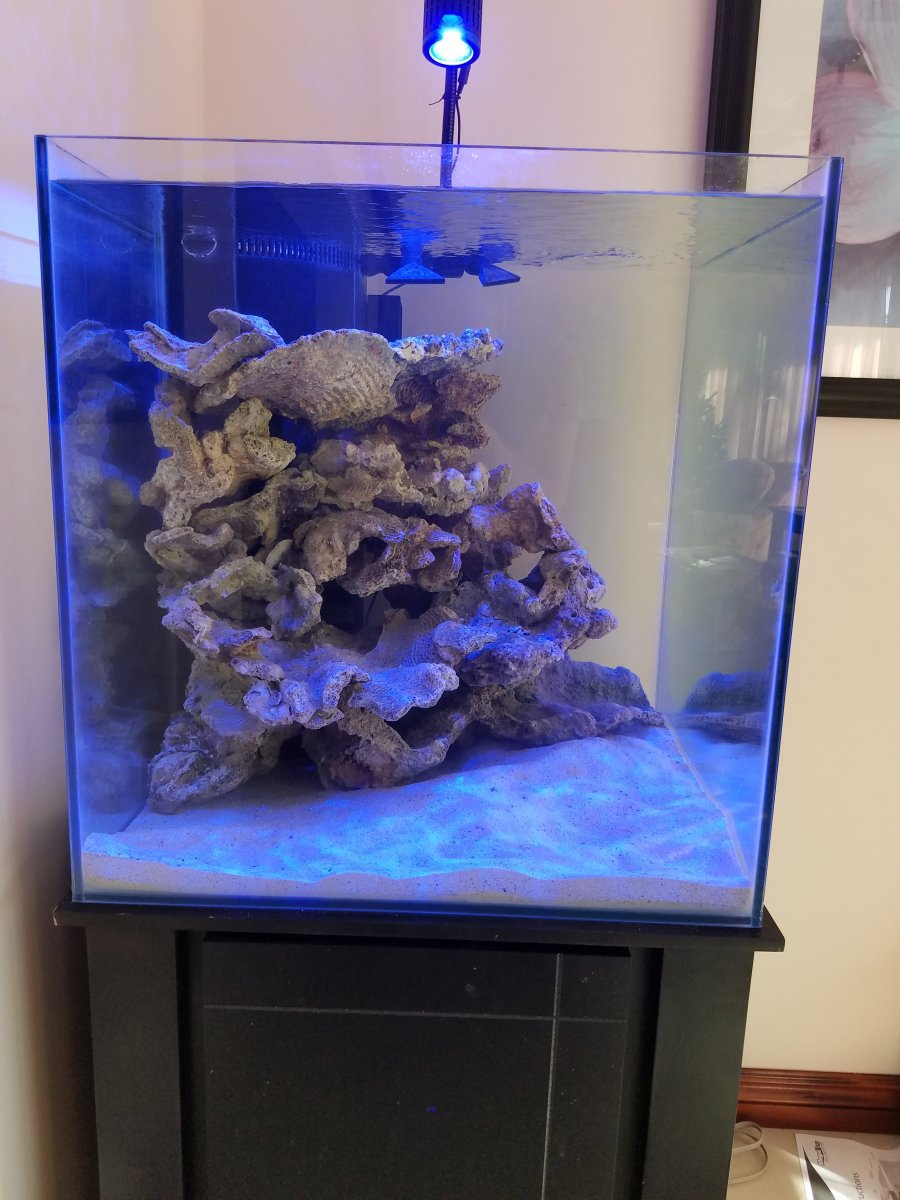 60 Gallon Cube Tank Build Reef2reef Saltwater And Reef