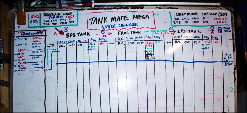 2019-06-24_TankMateMegaStart-WhiteBoard.jpg