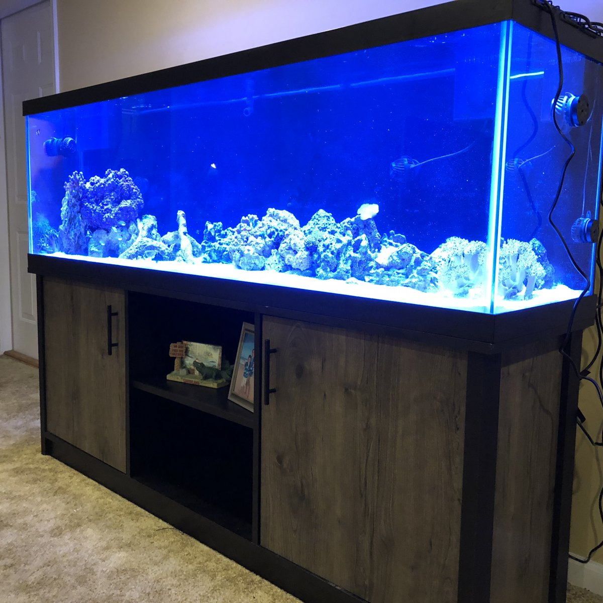 New 125 Aqueon Tank And Stand 524 99 Reef2reef Saltwater