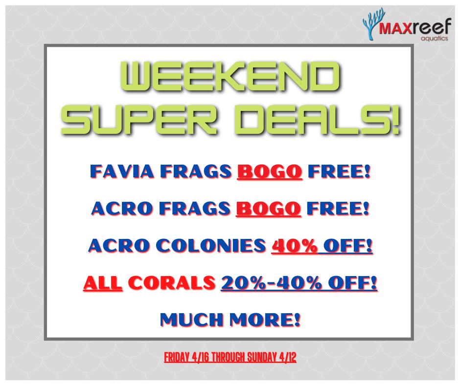 4_9 Weekend Sales (1).png