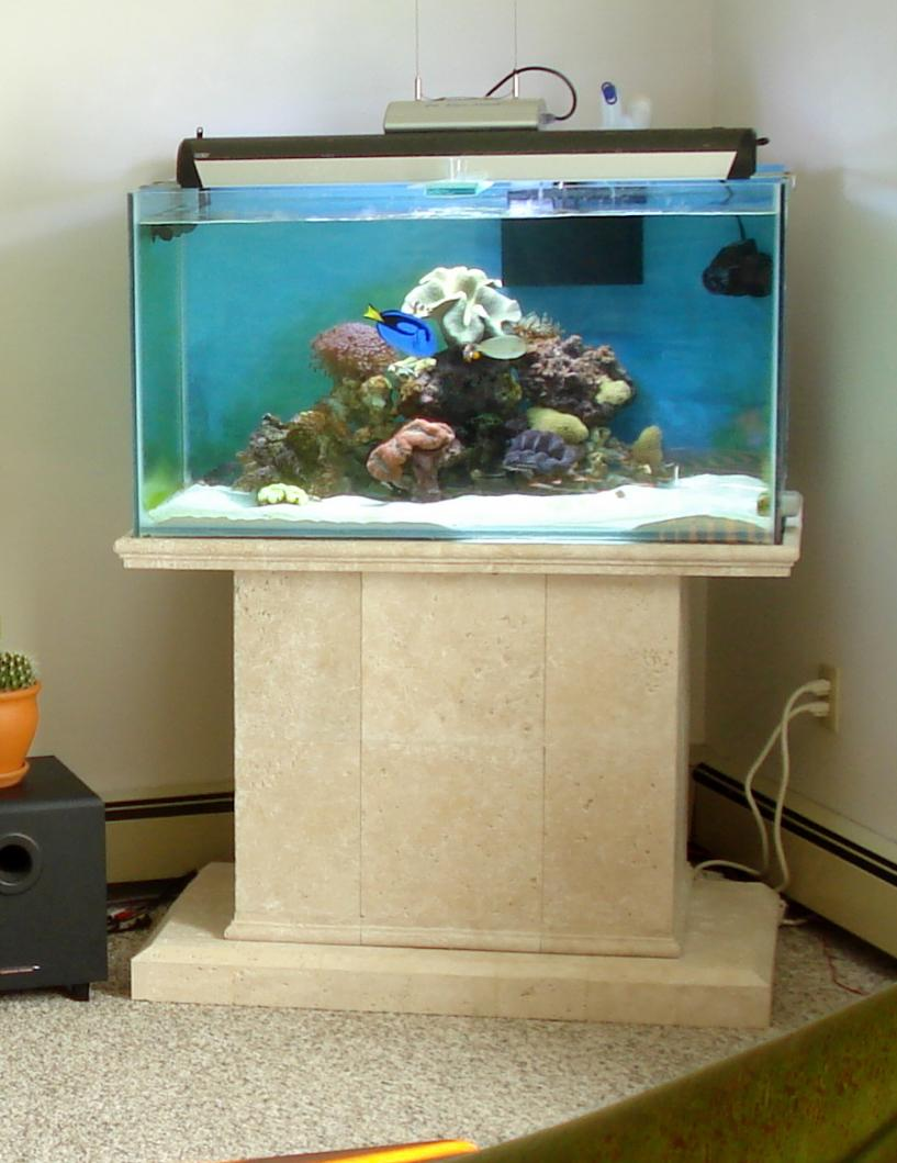 Show Me Your Cool Tank Stand Reef2reef Saltwater And