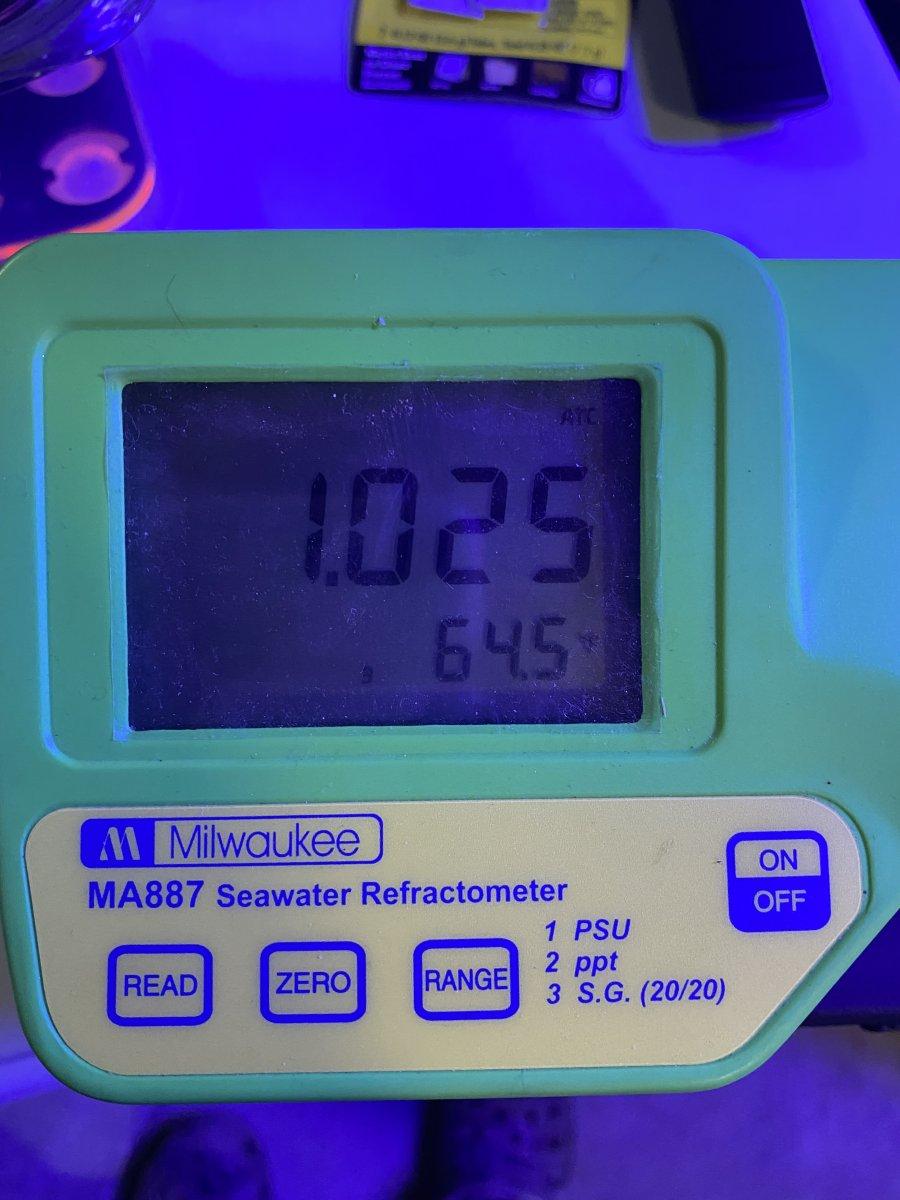 9767FA80-669F-4403-8F6D-AA01841FEF27.jpeg