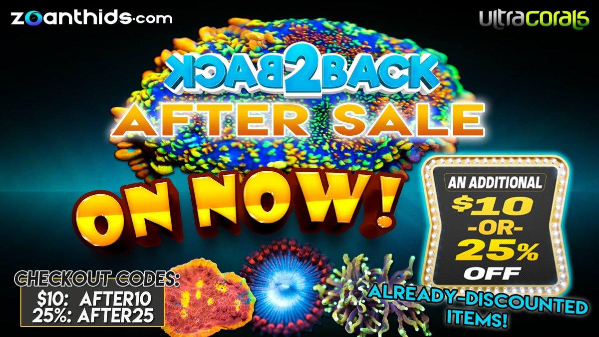 After-Sale-LG.jpg