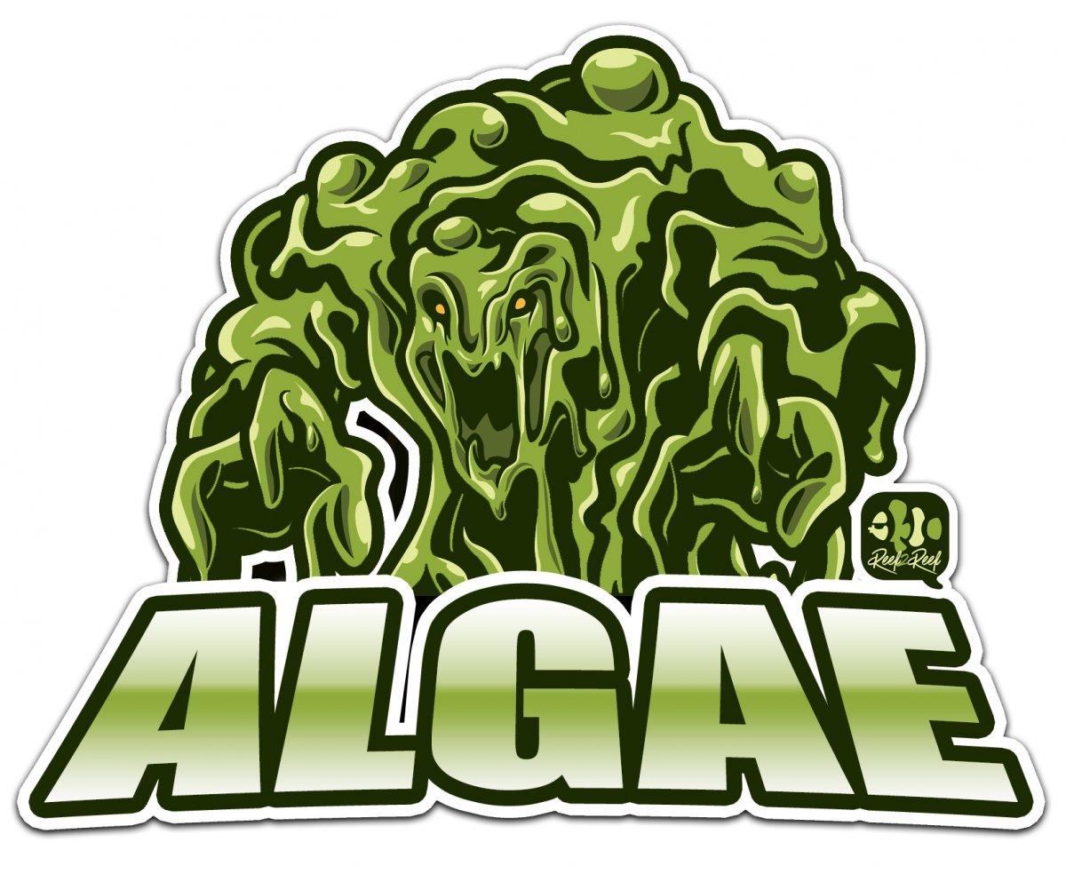 algae man monster 2.jpg