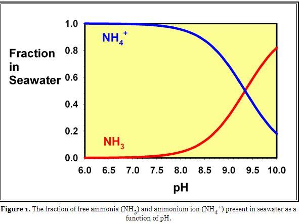 ammonia graph.JPG