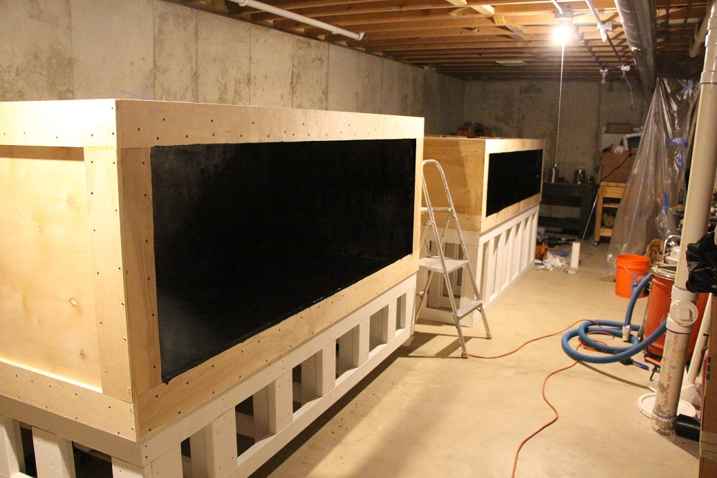 Alexgs basement plywood build 2 displays one system for Plywood fish tank