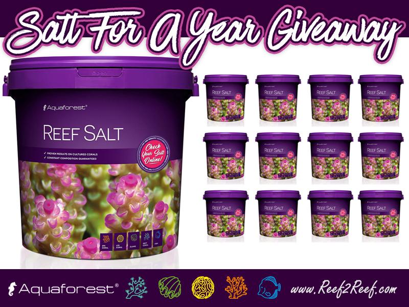 Aquaforest Salt Giveaway.jpg