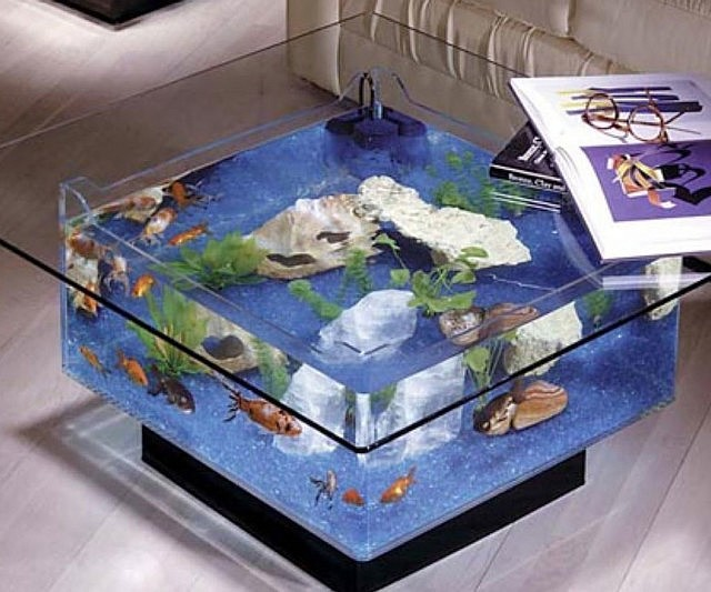 aquarium-coffee-table-640x533.jpg