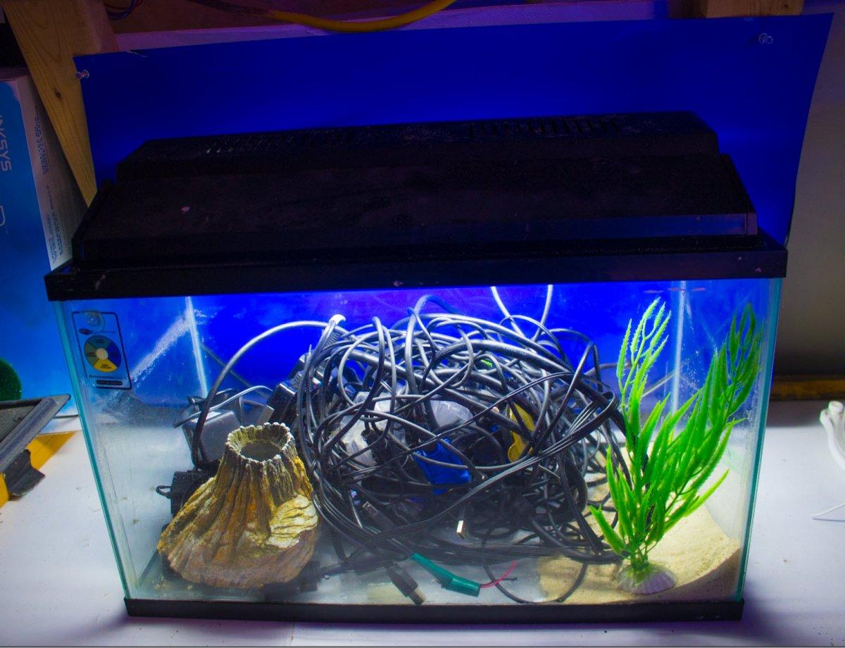 Aquarium_WireAquaScaping.jpg