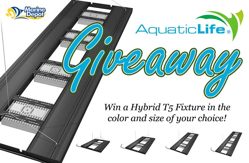 aquatic life giveaway4.jpg