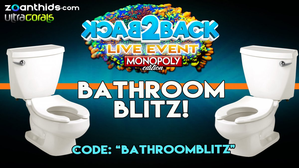 Bathroom-Blitz.jpg