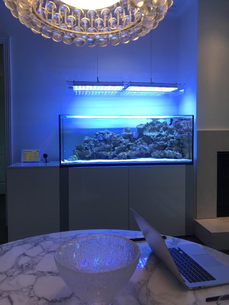 best high end aquarium led lighting.jpg