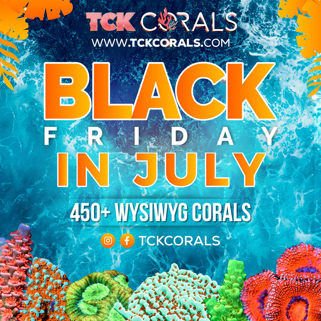 BLACK FRIDAY IN JULY Social Media Post Square 1080 x 1080.png