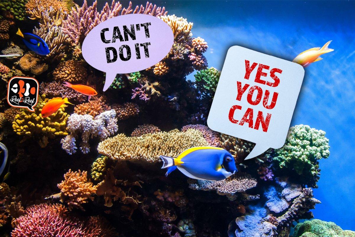 cant do it.jpg