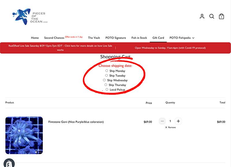 choose-shipping-date.jpg