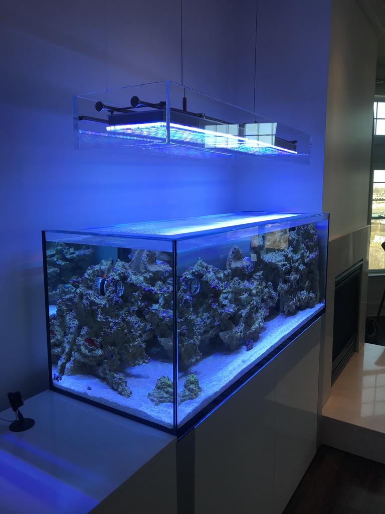 clean look mount bracket aquarium LED light.jpg