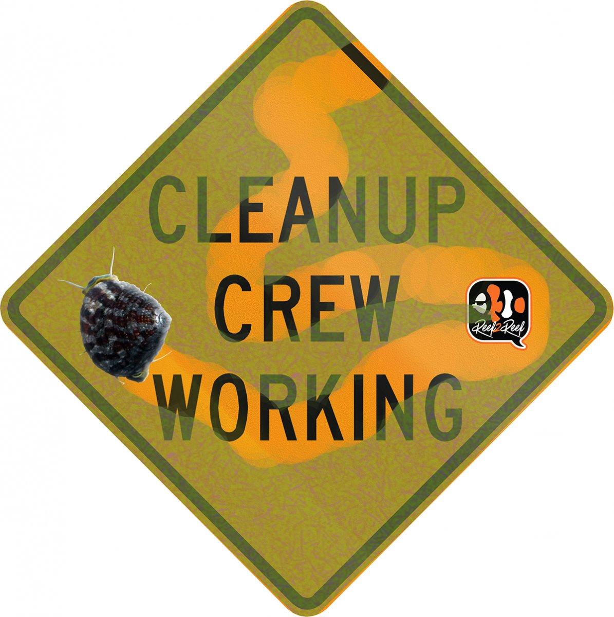cleanup crew.jpg