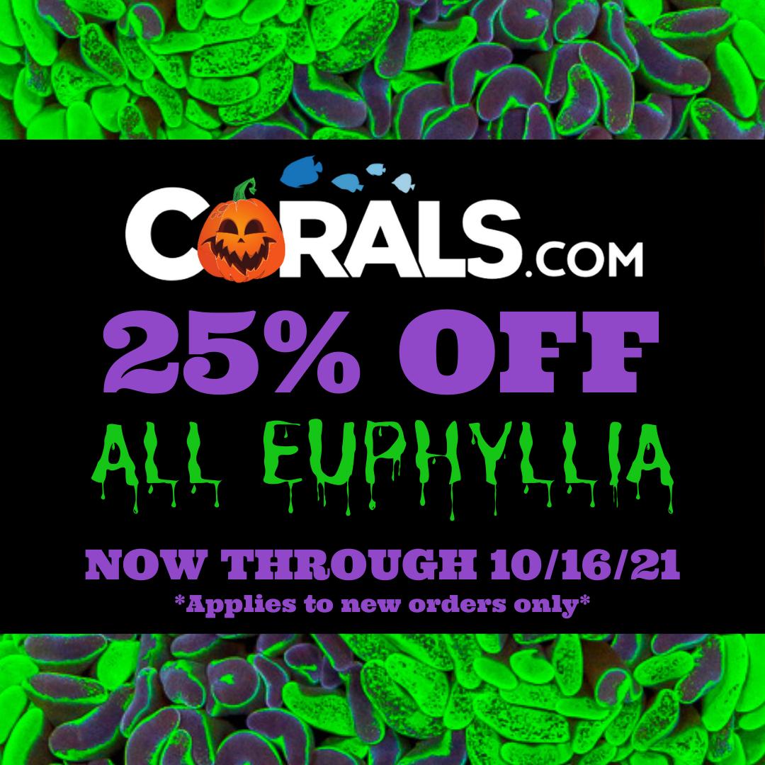 Copy of Euphyllia Sale.png