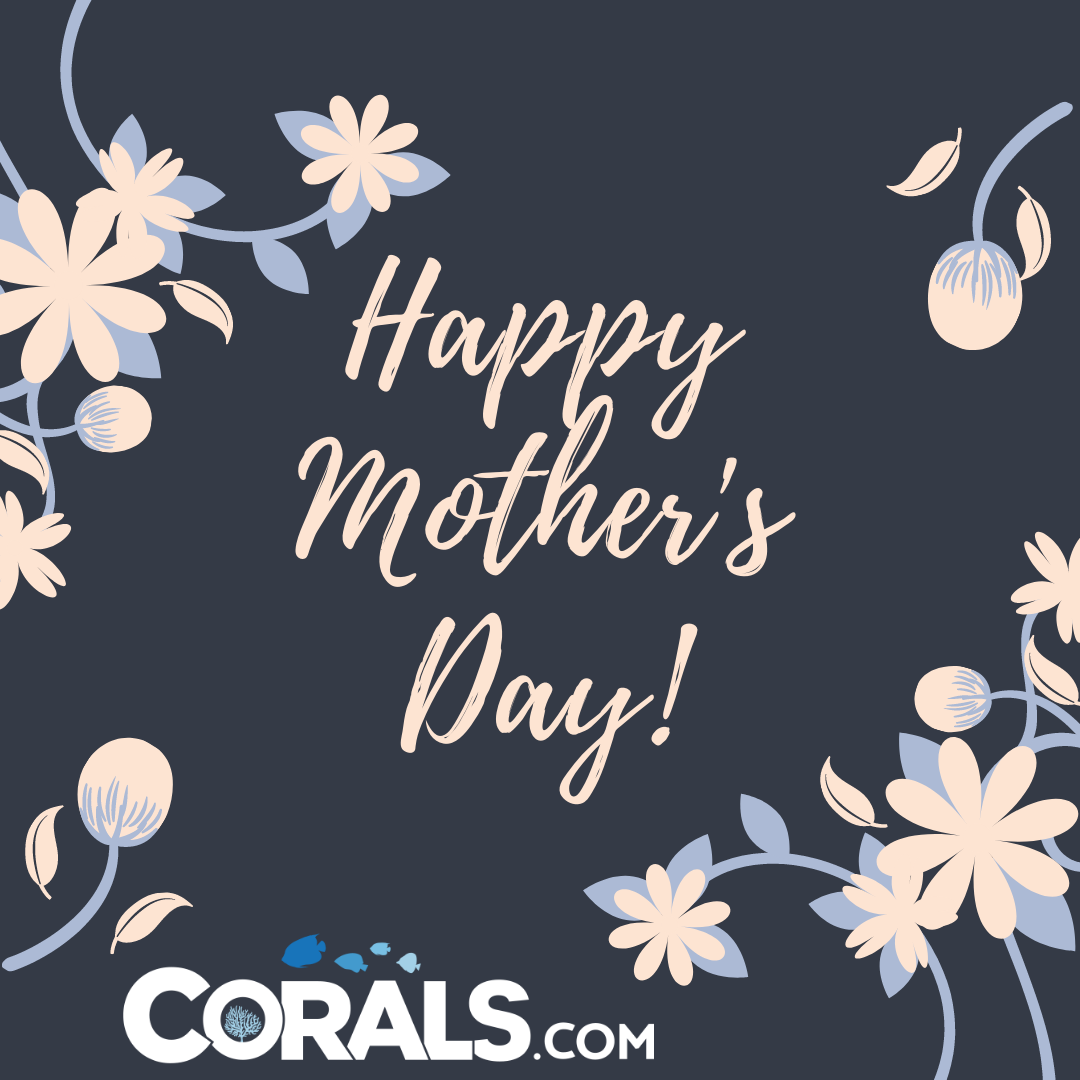 Copy of Grey Florals Mother's Day Card.png