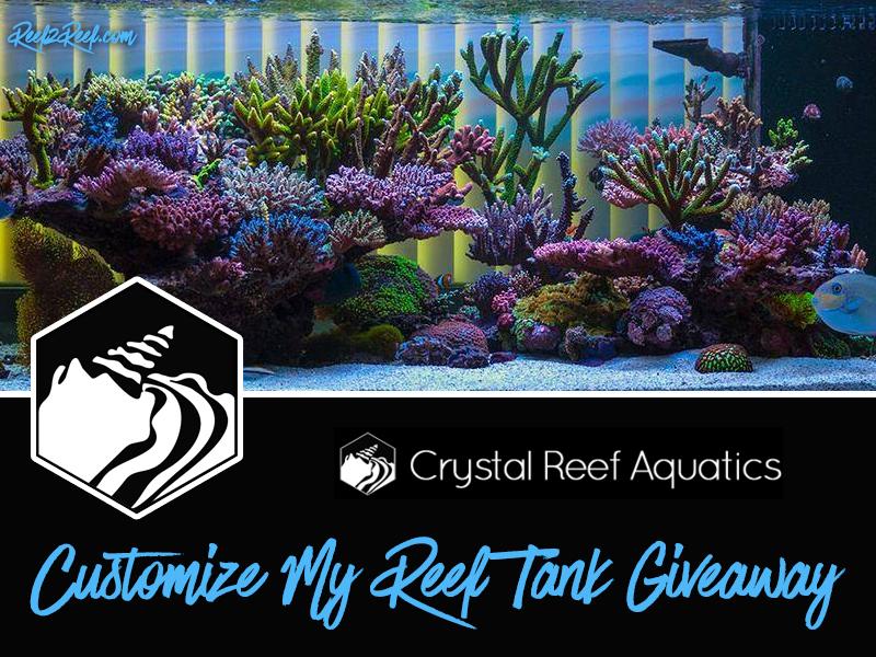 Crystal Reef Tank Giveaway2.jpg