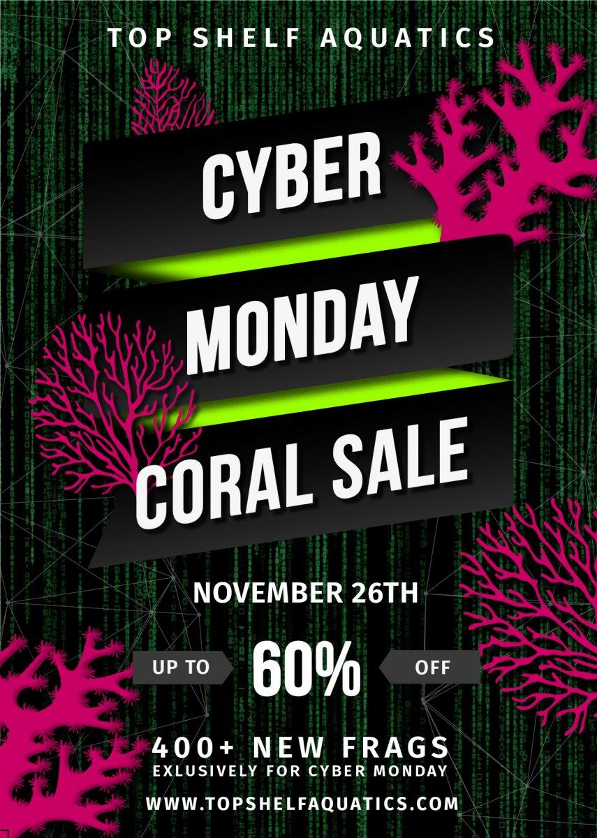 Cyber Monday Flyer GREEN.jpg