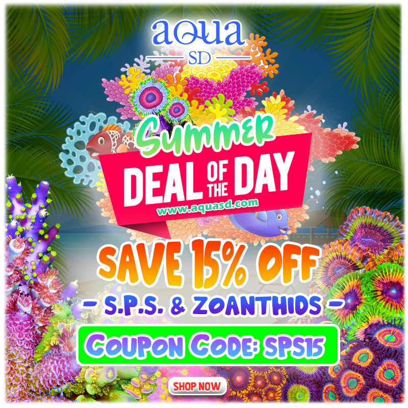 Daily-sps-zoas.png