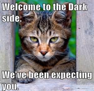 dark side.jpg