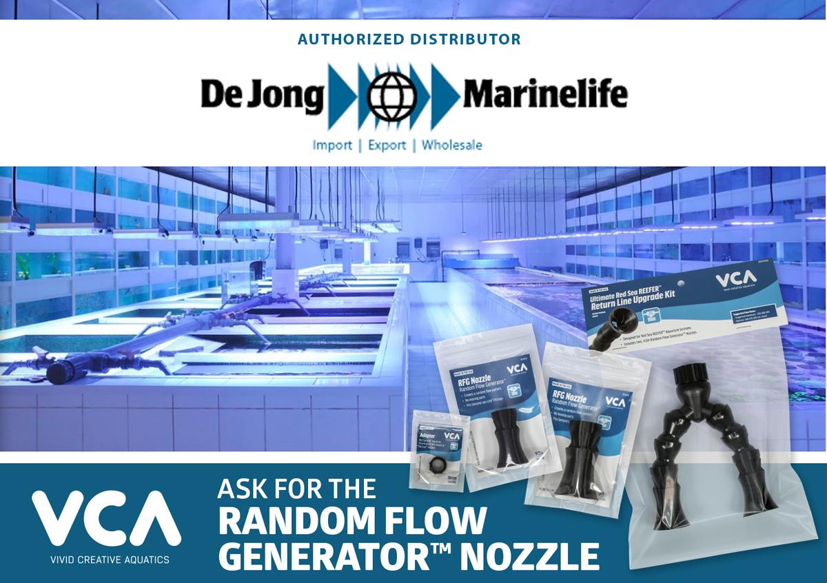Dejon-Marineline_widepsd.jpg