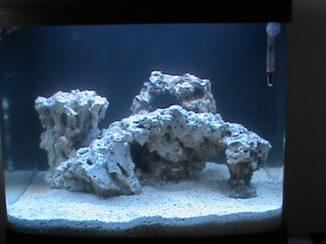 29 gallon biocube reef2reef saltwater and reef aquarium for Bio cube fish tank