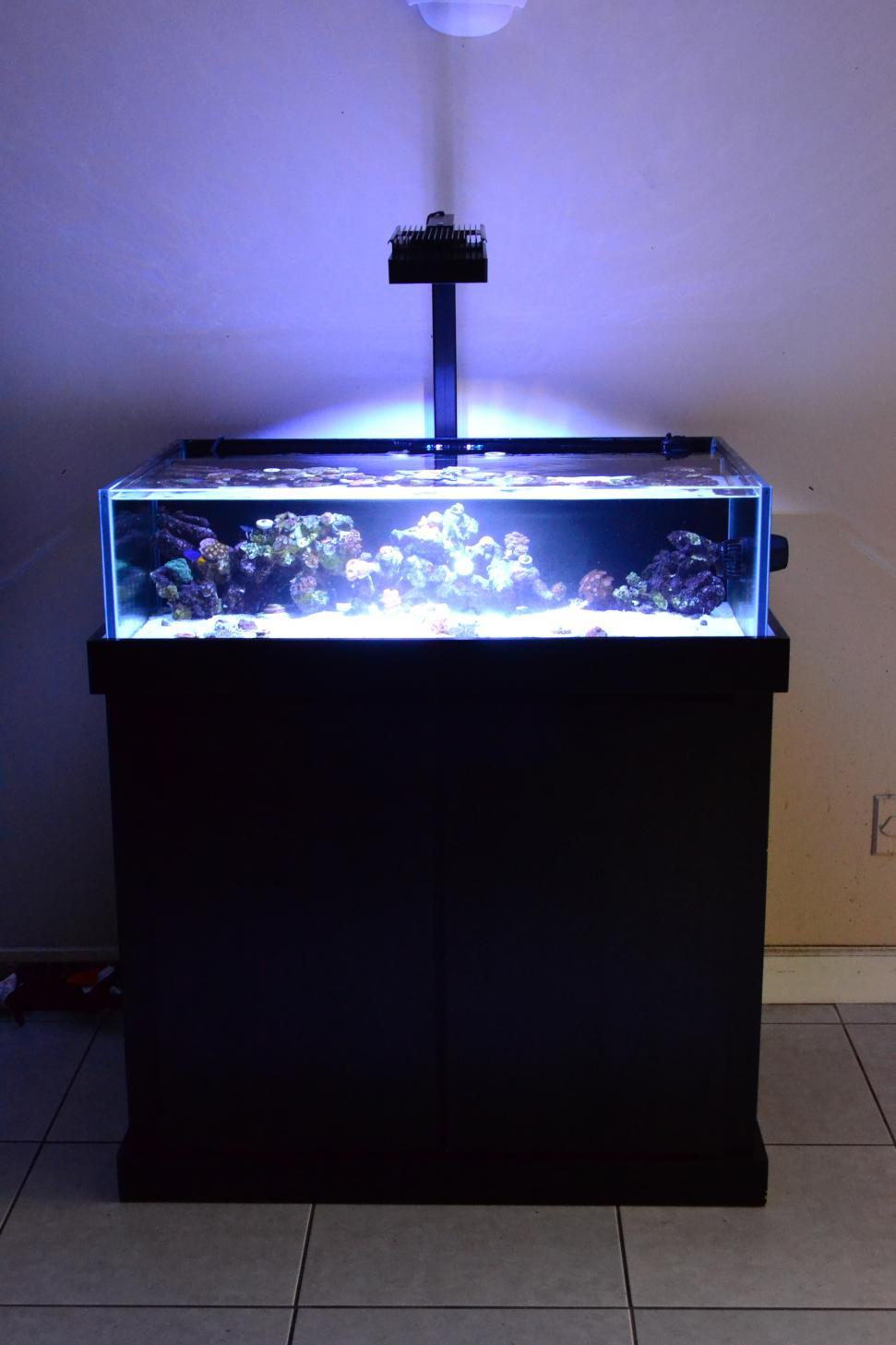 Shallow reef tank stand sump fs reef2reef saltwater for Fish tank sump pump