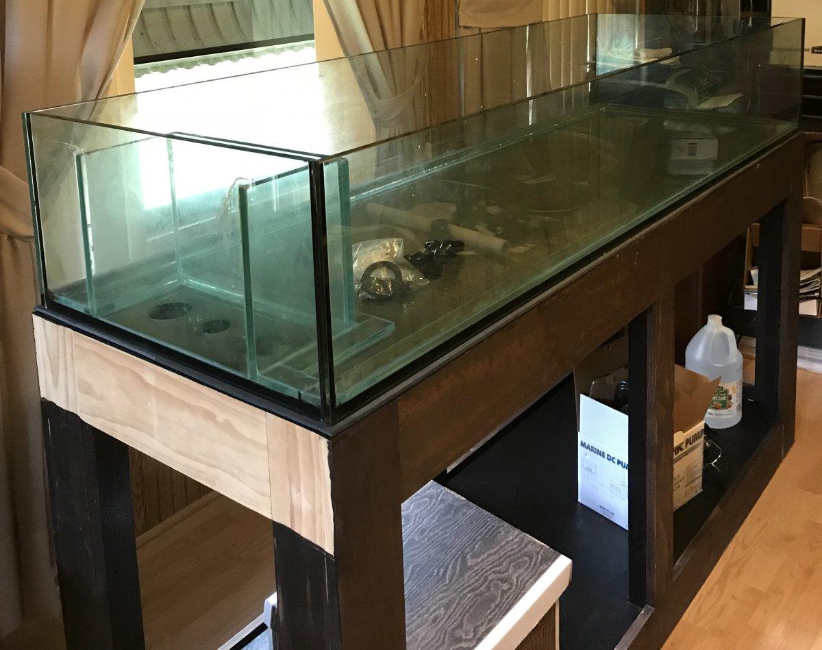 Empty tank IMG_1028.jpg