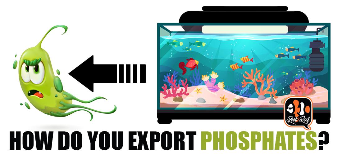 export phosphates.jpg