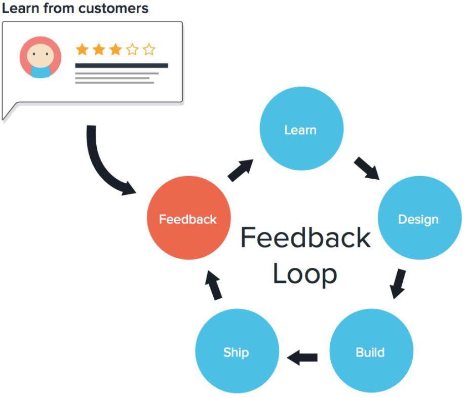 feedbackloop.PNG