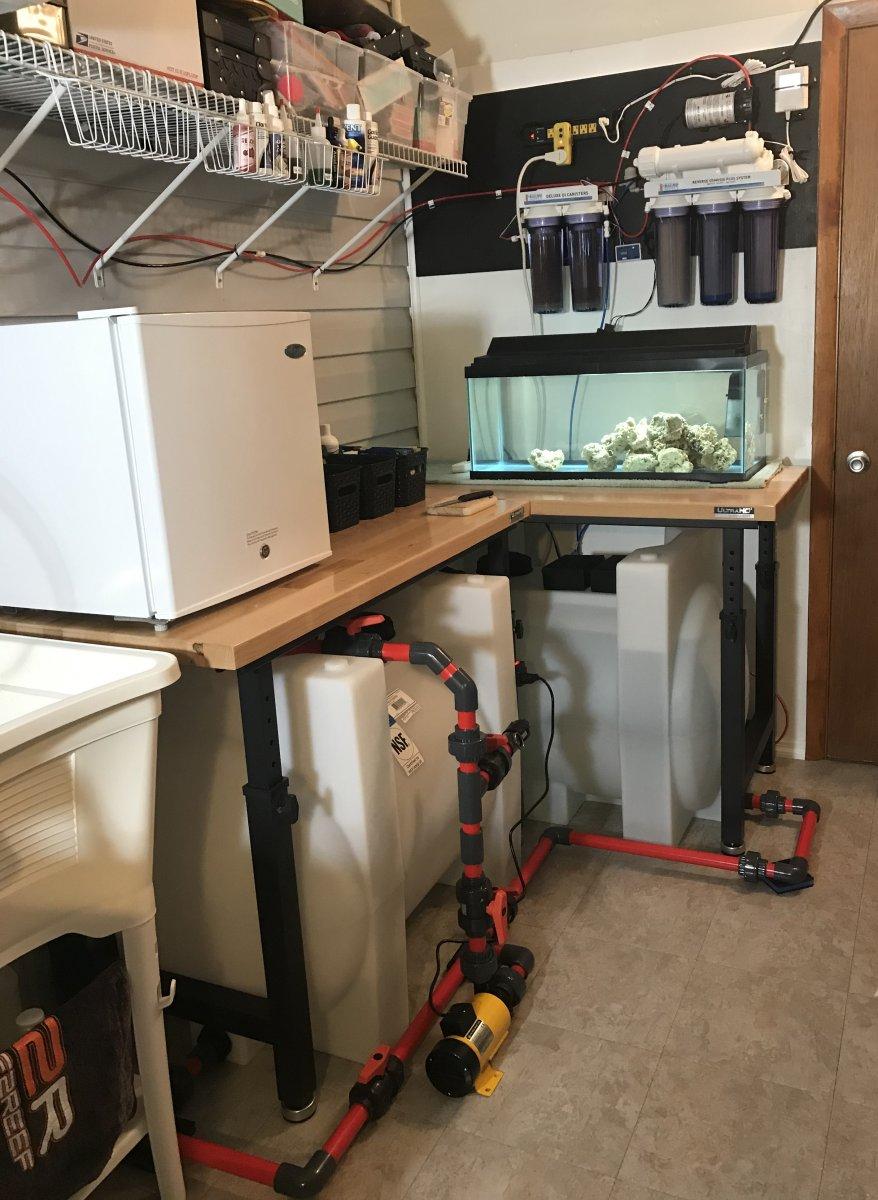Fish room 2 IMG_4841.jpg