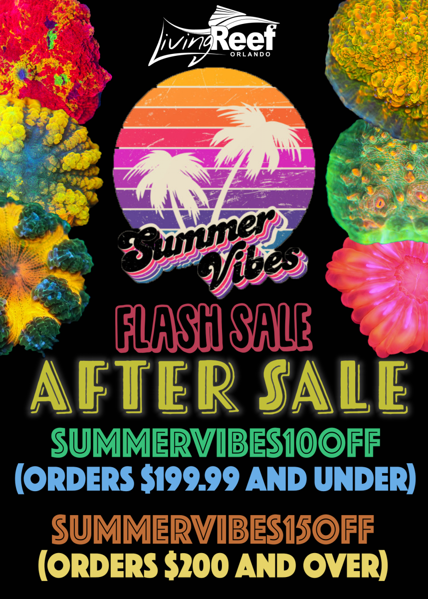 flash sale flyer1-Recovered.png