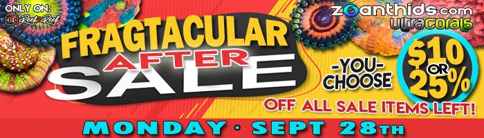 Fragtacular-After-Sale.jpg