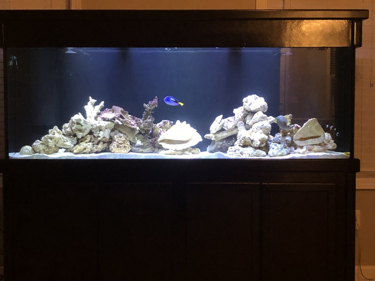FTS with fish.jpg