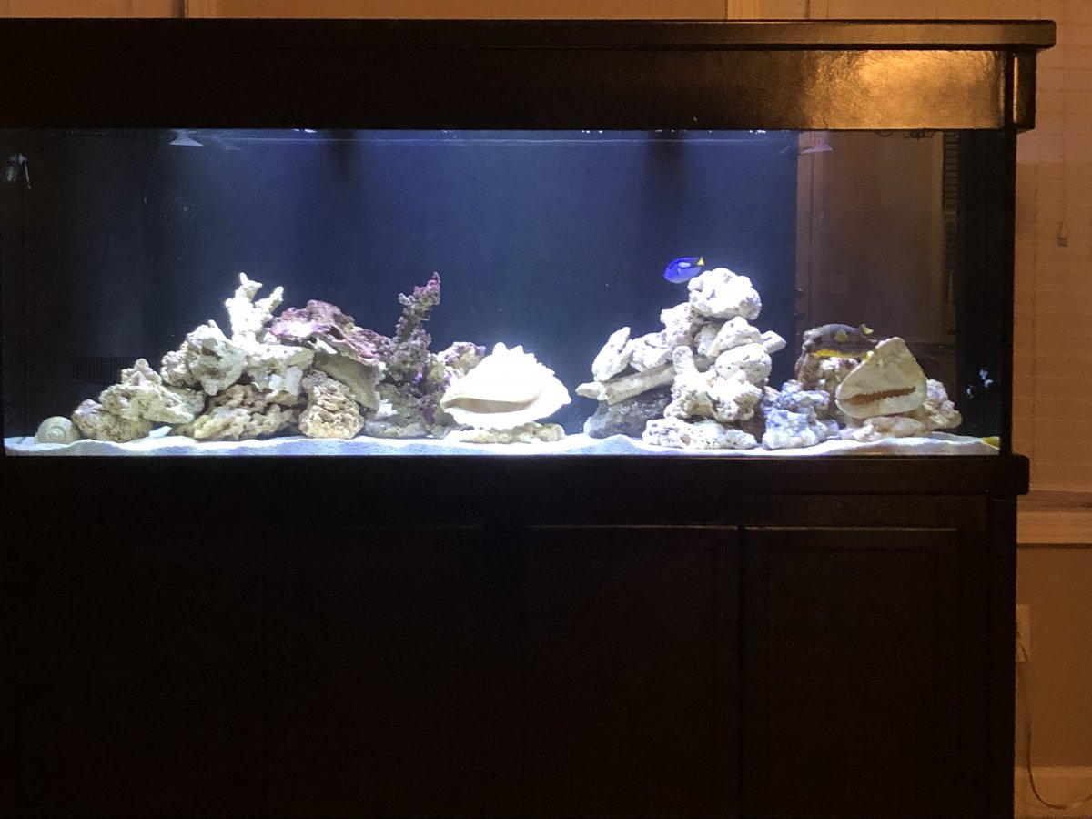 FTS with fish2.jpg