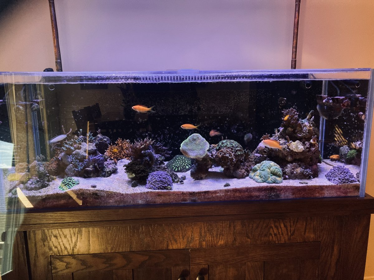 FTS_March_2021.JPG