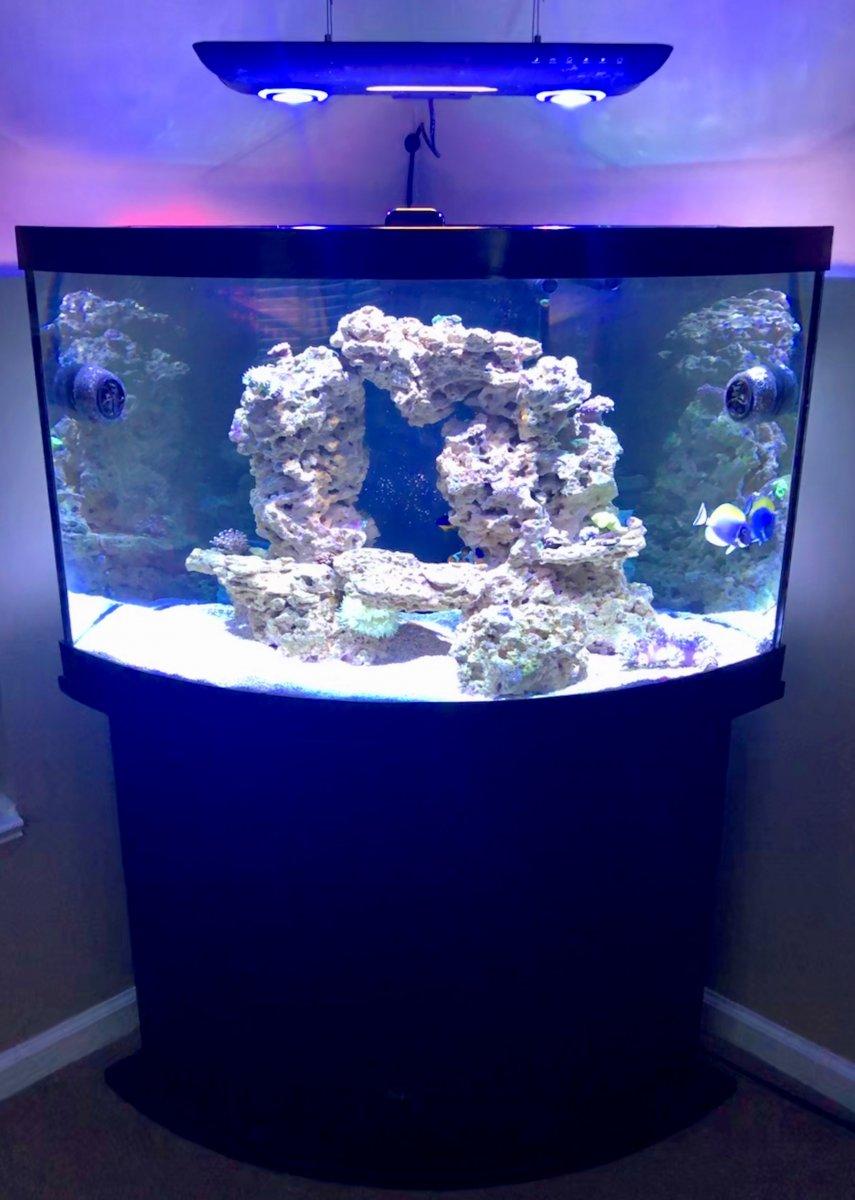 Full Tank with Light.jpg