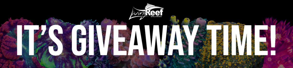 Giveaway banner R2R.png